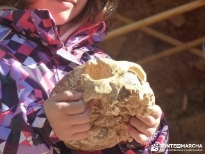 Yacimientos Atapuerca - Sierra de la Demanda; sierra norte de madrid gente para viajar